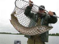 Подсак для рыбы
